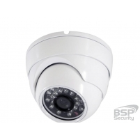 BSP Security Модель 0095 (BSP-DI20-POE-02)