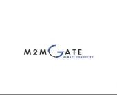 M2MGate Solution
